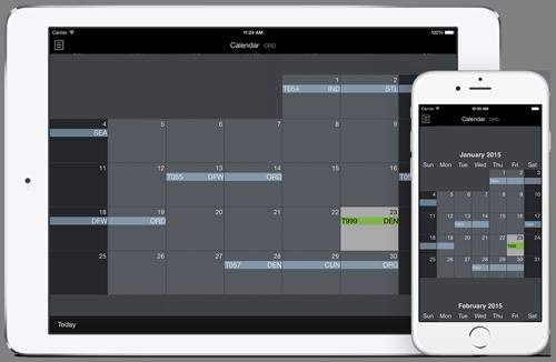 APDL Calendar View